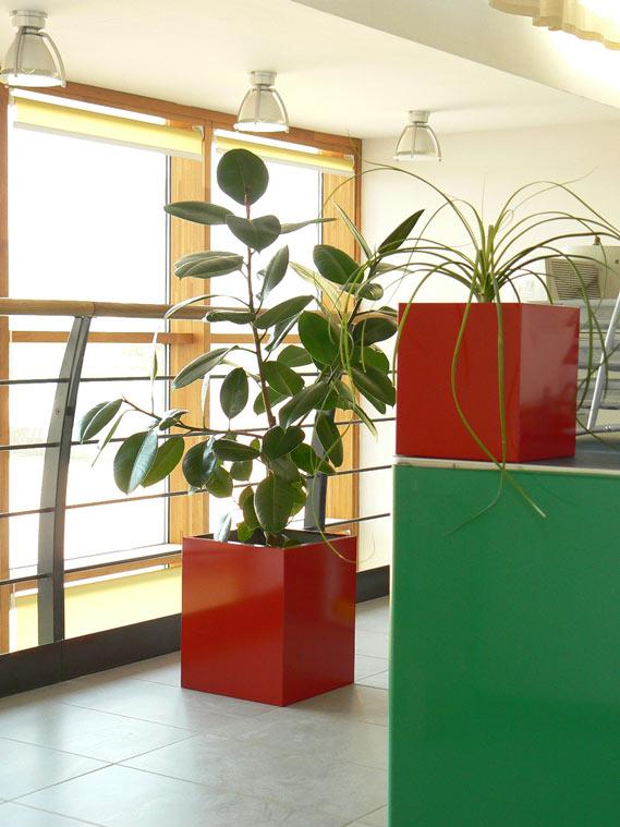 ufficio-con-fioriere-rosse